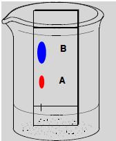 Draw thin layer chromatography where A is more polar than B