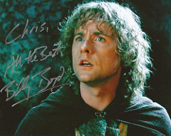Peregrin (Pippin) Took