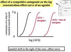 Experiment: Effect of Competitive Antagonist (Atropine) on Agonist (ACh)