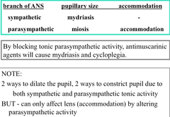 Ophthalmologic Effects of Muscarinic Antagonists