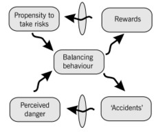 2 - Risk appetite and culture Risk thermostat