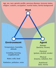 Epidemiological triangle