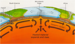 What do scientists think cause plate tectonics?